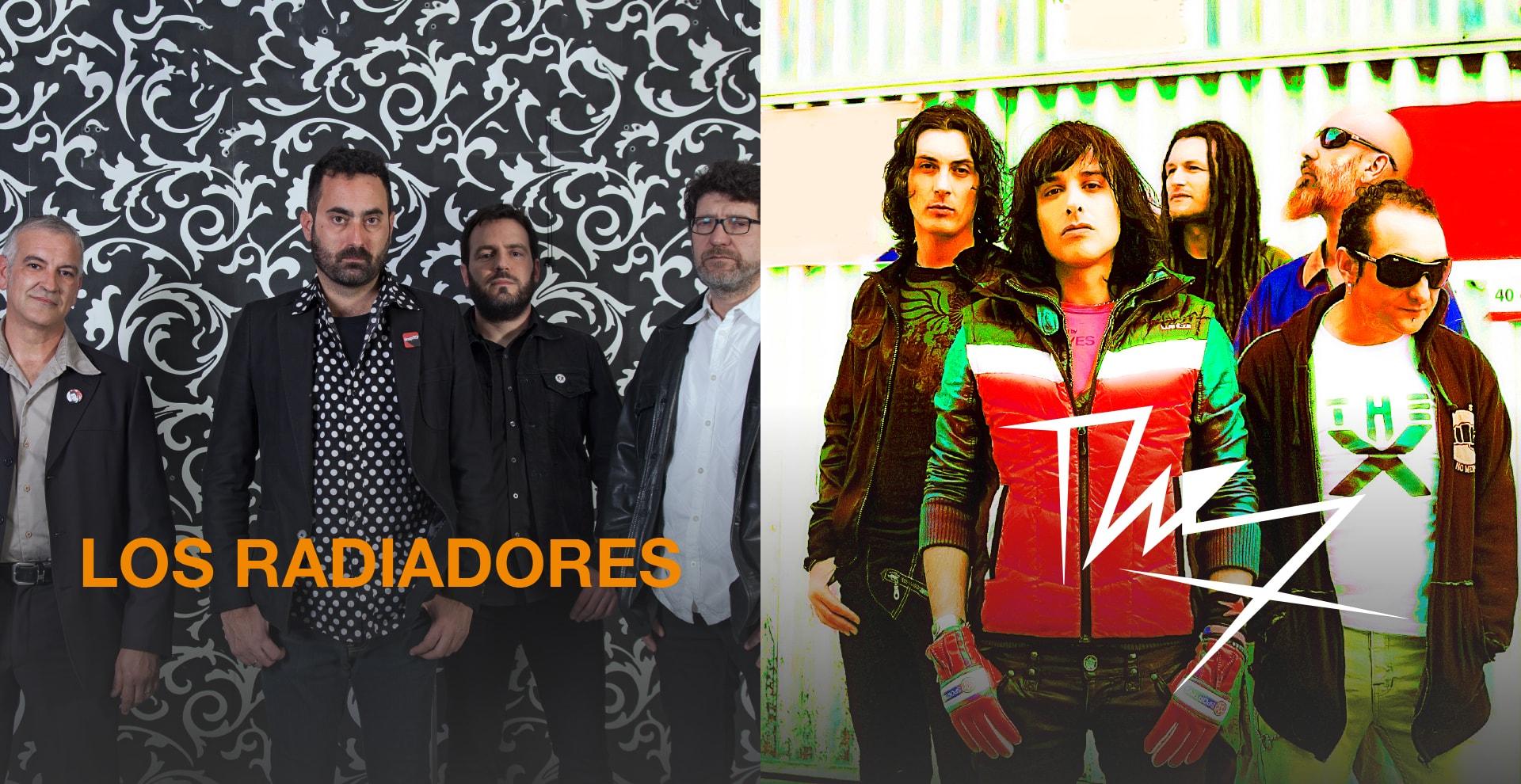 RADIADORES-THEX-min